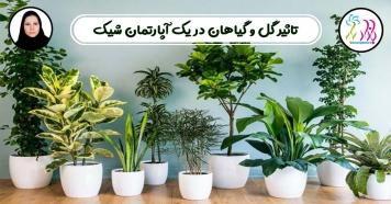 تاثیر گل و گیاهان در یک آپارتمان شیک